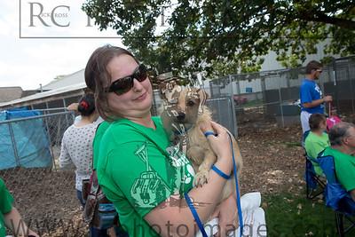 021_KCHS Doggie Jog 092814_3472-2