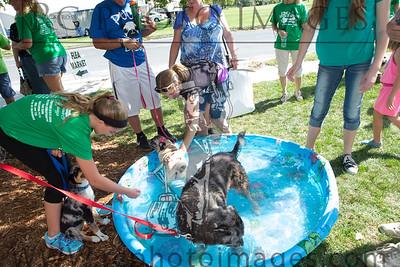 011_KCHS Doggie Jog 092814_3450-2
