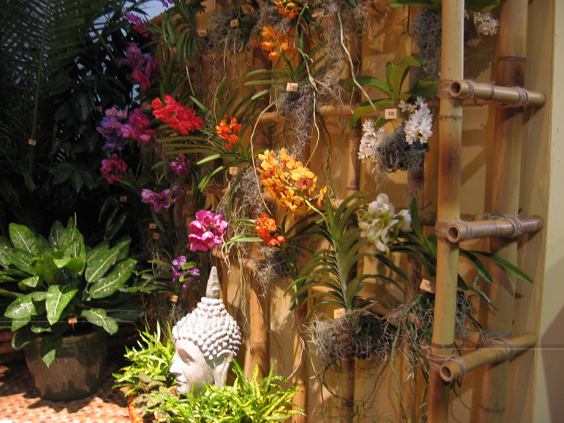 Thai display with orchids and bamboo