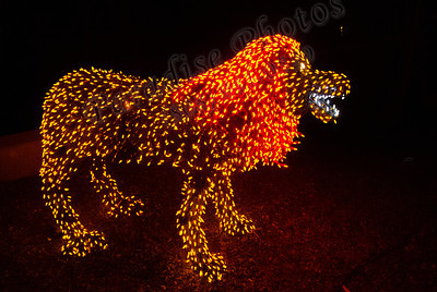 lighted lion 2188