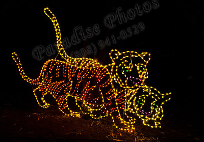 Tigers in lights1948