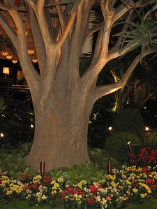 Photo of Steve Wynn's new casino Encore in Las Vegas before it is open to public by www.ReallyVegas.com