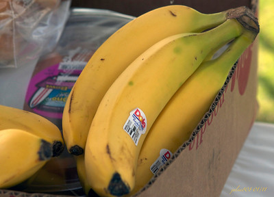 bananas010111