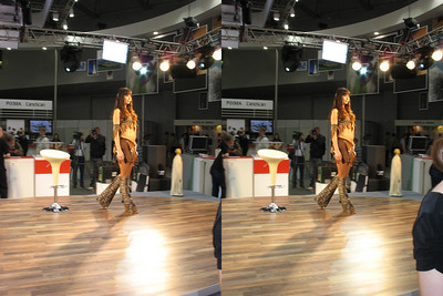 2010-04-18, Photoforum, Crocus-Expo (3D Stereo, Parallel View)