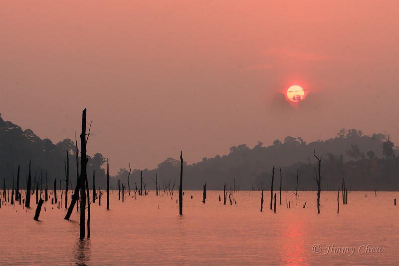 Sunrise and dead trees.