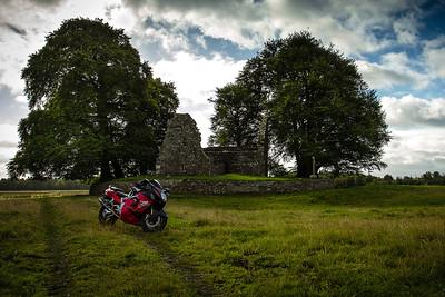 16. Tipperary Monaincha abbey; 3K E of Roscrea