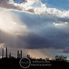 2010 July 24 Desert Museum photowalk-1306