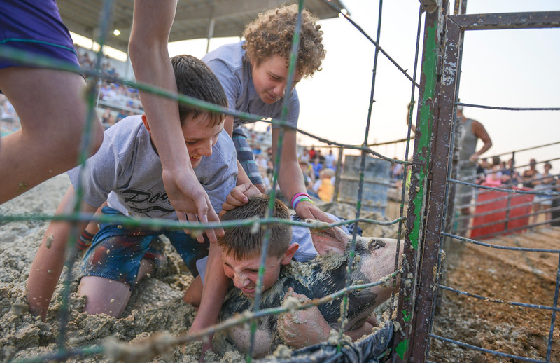 Justin Sheely | The Sheridan Press<br /> From top, Anthony Carlson, Lath Brown and Casen Willson tackle a pig during Pig Wrestling at the Sheridan County Fairgrounds Saturday, July 28, 2018. (Willson is spelled correct)