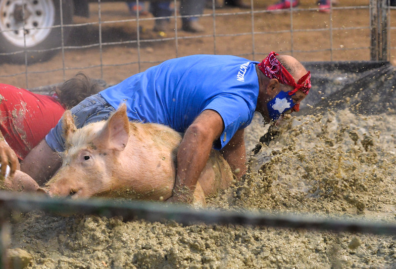 Justin Sheely | The Sheridan Press<br /> The Chubby Chasers team struggles with their pig during Pig Wrestling at the Sheridan County Fairgrounds Saturday, July 28, 2018.