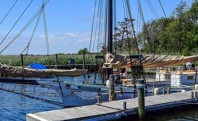 Pirate Festival W  Sayville 27 Priscilla