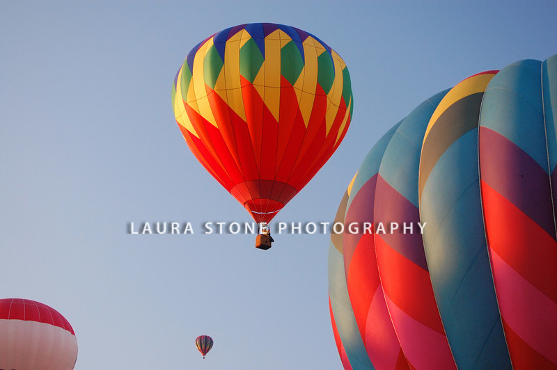 A group of hot-air balloons in the sky during a balloon festival.