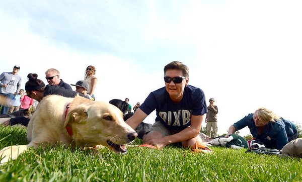 """James Crouch tries to make his dog, Roxy, play dead for the Play-Dead-A-Palooza world record at Scott Carpenter Park on Sunday.<br />  Bixbi Pet (makers of 100 percent USA sourced dog treats) set the world record for 11 dogs playing dead at once. A world record effort, supported by RecordSetter, is to raise awareness about tainted dog treats.<br /> For more photos and a video of the dogs, got to  <a href=""""http://www.dailycamera.com"""">http://www.dailycamera.com</a>.<br /> Cliff Grassmick  / September 23, 2012"""