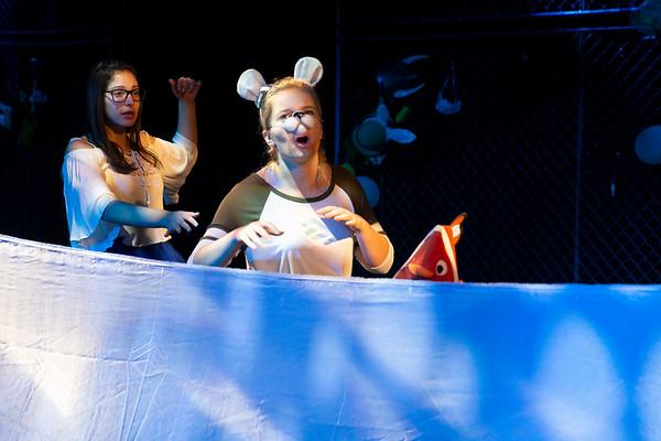Alice in Wonderland May 2018