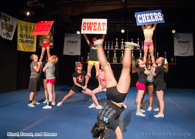 Blood, Sweat and Cheers 6/3/2013