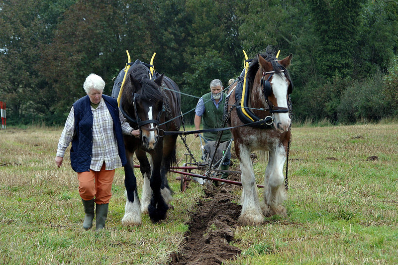2004 Ploughing Match at Whitchurch Farm Ston Easton