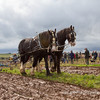 Mendip Ploughing Match 2012 at Yoxter