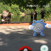 A Poliwhirl can be seen at Coggshall Park in Fitchburg on Tuesday afternoon. SENTINEL & ENTERPRISE / Ashley Green