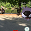 A Gastly can be seen at Coggshall Park in Fitchburg on Tuesday afternoon. SENTINEL & ENTERPRISE / Ashley Green