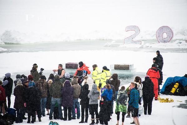Polar Bear Jump 2014