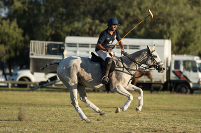Gold Coast Polo2017-37