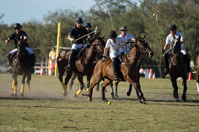 Gold Coast Polo2017-5