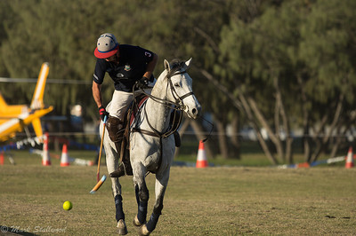 Gold Coast Polo2017-33