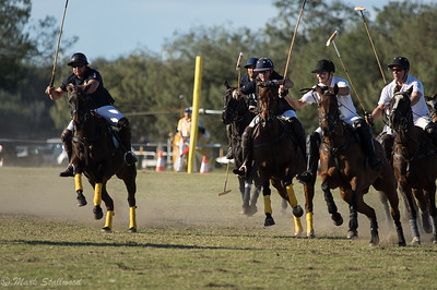 Gold Coast Polo2017-7