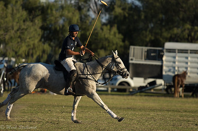 Gold Coast Polo2017-36