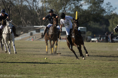 Gold Coast Polo2017-3