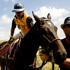 """Tanweer Khan, of Colorado Springs, mounts his horse while groomer Mario Paramio holds the horse steady before the start of a polo match at Ashlawn Farms north of Boulder, Saturday, June 19, 2010. Khan is playing for the team JKW.<br /> <br /> For a video of the game, please visit  <a href=""""http://www.dailycamera.com"""">http://www.dailycamera.com</a><br /> Kasia Broussalian"""