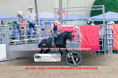Pond Hill Pro Rodeo-5318_08-04-17  by Brianna Morrissey  ©BLM Photography 2017