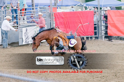 Pond Hill Pro Rodeo-5350_08-04-17  by Brianna Morrissey  ©BLM Photography 2017
