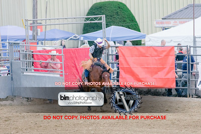 Pond Hill Pro Rodeo-5346_08-04-17  by Brianna Morrissey  ©BLM Photography 2017