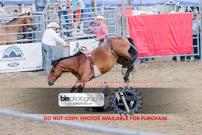 Pond Hill Pro Rodeo-5351_08-04-17  by Brianna Morrissey  ©BLM Photography 2017