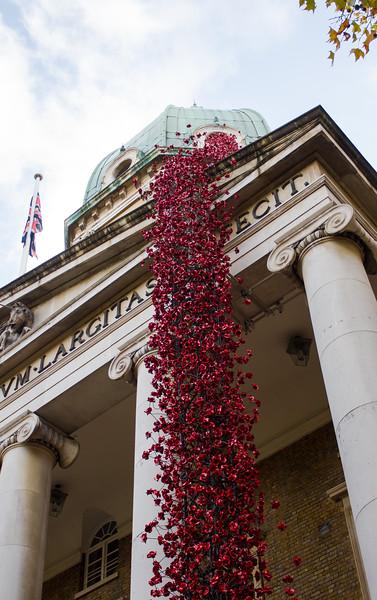 Poppies: Weeping Window - Imperial War Museum