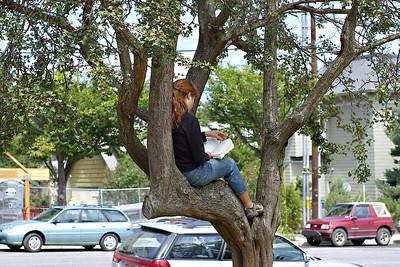 Treeding