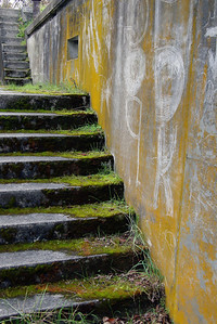 Mossy steps at Fort Worden.