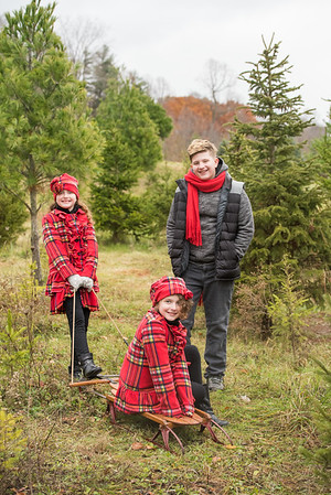 Babic Family Tree Farm Mini