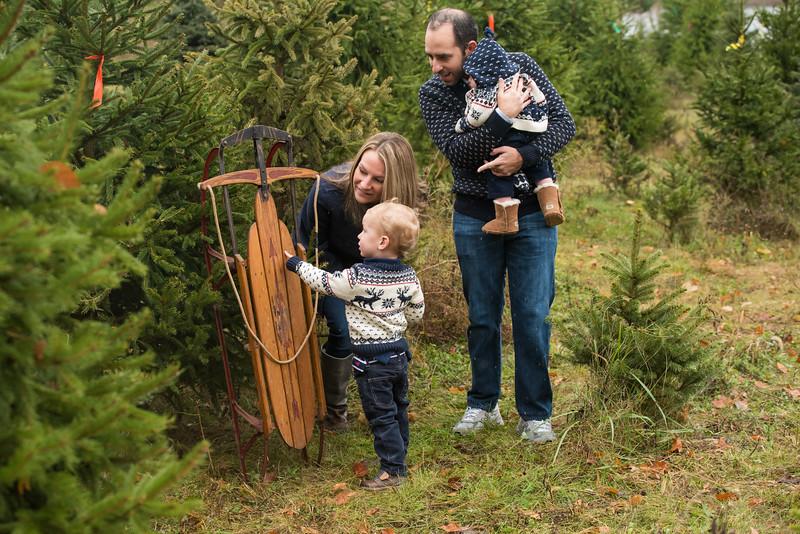 Whitman-Rush Goldstein Tree Farm Minis