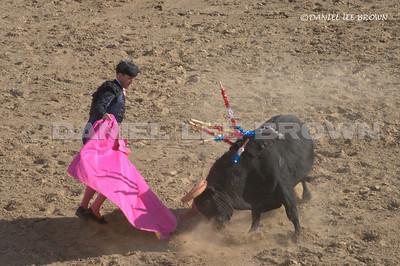 Portuguese Bullfight Stevinson Ca, 5-24-09