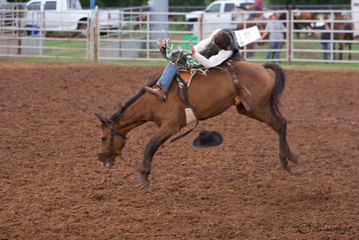 Pott. County Fair Rodeo