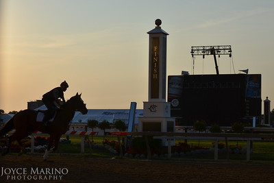 Pimlico Race Track in Baltimore, MD.  The morning of Thursday prior to The Preakness, 2012 -- #3199