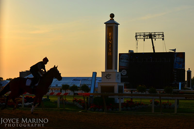 Pimlico Race Track in Baltimore, MD.  The morning of Thursday prior to The Preakness, 2012 -- # 3199