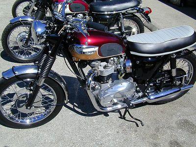 prettu bikes at alices 007
