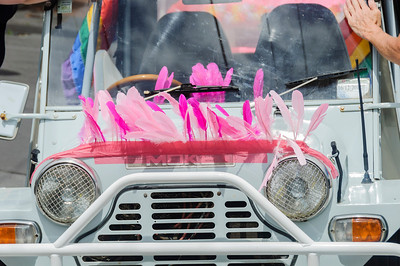 Front of car decorated with pink feathers, ready for the Pride Parade Ponsonby Auckland