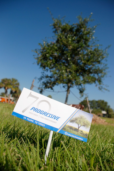 Wednesday, 11/14 - Progressive Insurance in Tampa, FL held their 70 year tree planting event.