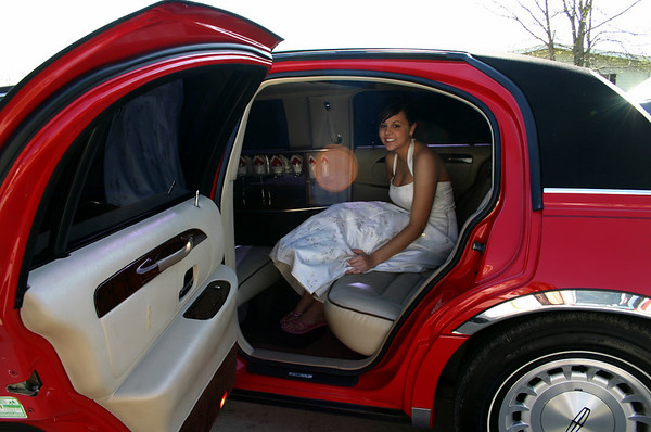 Erin in the Limousine  ( 2007 )