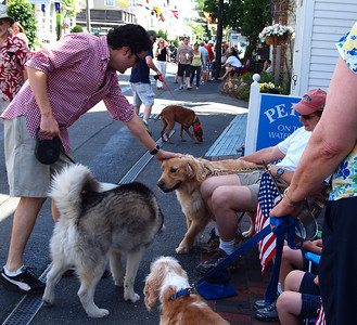 Provincetown 4th of July