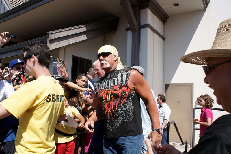 Hulk Hogan 2010.