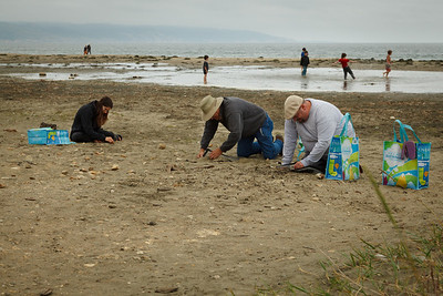 Nikki, Pete and John sifting garbage out of the sand. Drakes Beach - Point Reyes National Seashore.
